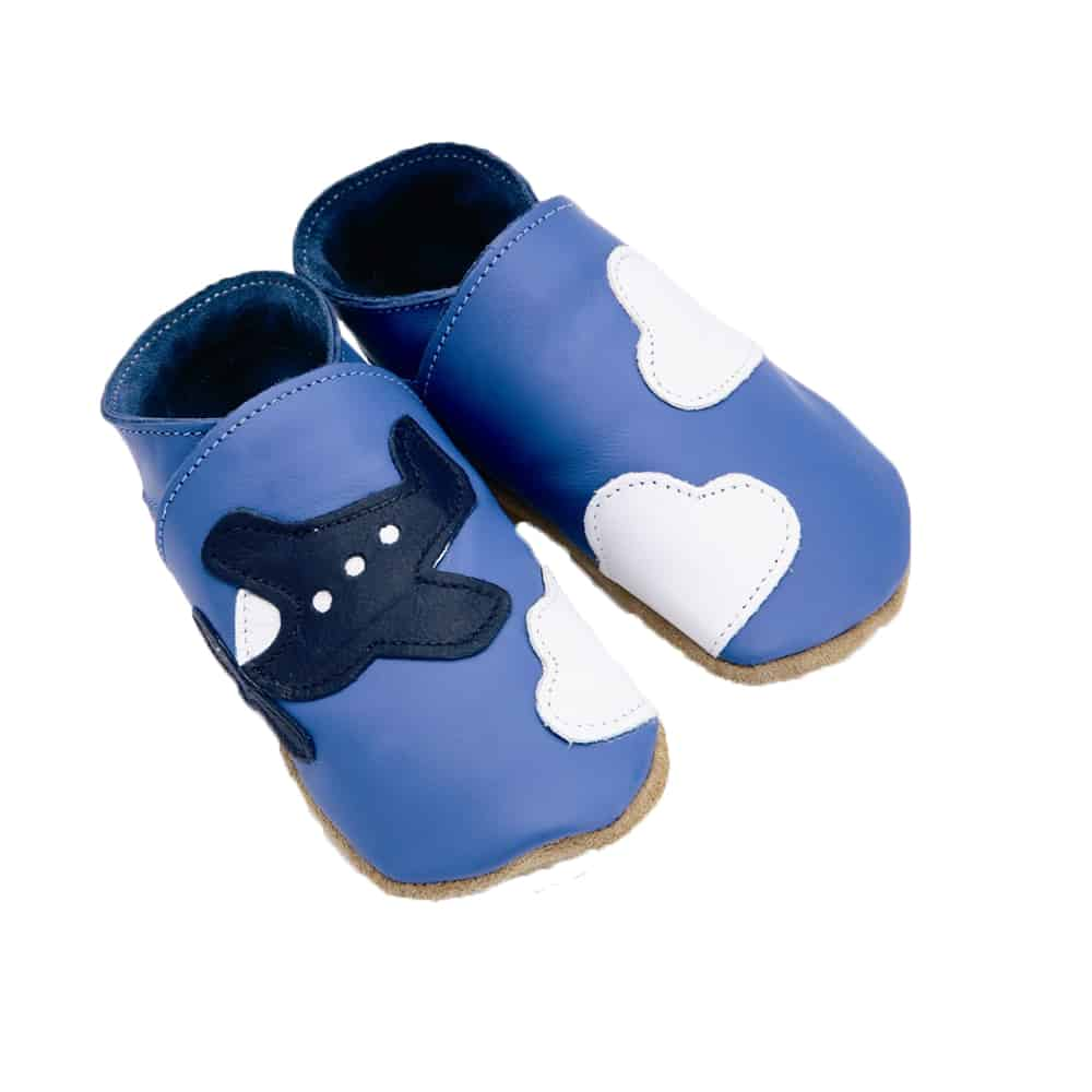 Pantofiori Blue Aeroplane, Starchild